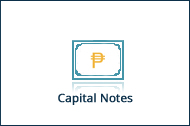 capital notes 2